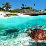 snorkeling et plongee libre Madagascar
