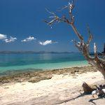 Saison plongée Nosy Komba Madagascar
