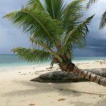 plages de l'ile aux nattes
