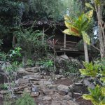 komba-zen-forest-nosykomba-ecolodge-de-luxe-p45