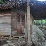 komba-zen-forest-nosykomba-ecolodge-de-luxe-p49