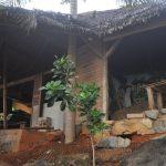 komba-zen-forest-nosykomba-ecolodge-de-luxe-p62