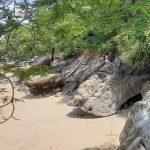 komba-zen-forest-nosykomba-ecolodge-de-luxe-nosybe-p02