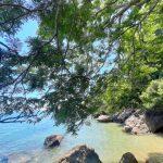 komba-zen-forest-nosykomba-ecolodge-de-luxe-nosybe-p03